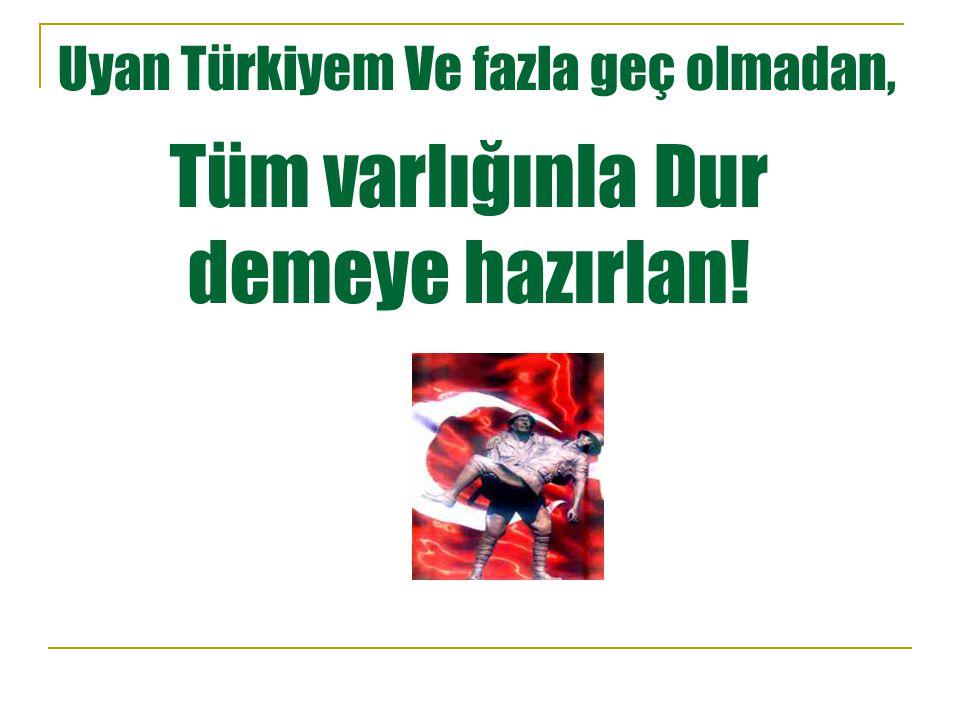 Türkiye'yi er ya da geç tamamı ile elde etmeye çalışan bu emperyalist güçleri asla unutma !