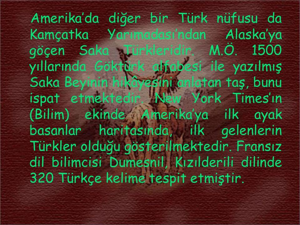 Amerika'da diğer bir Türk nüfusu da Kamçatka Yarımadası'ndan Alaska'ya göçen Saka Türkleridir. M.Ö. 1500 yıllarında Göktürk alfabesi ile yazılmış Saka