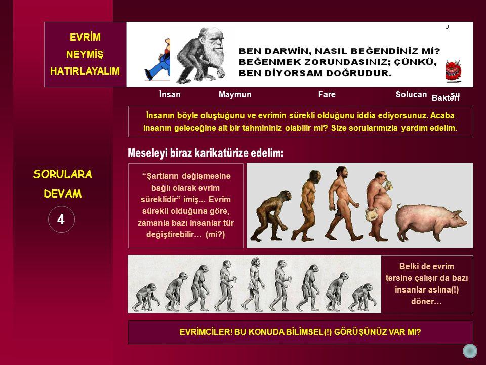 SORULARA DEVAM İnsanın böyle oluştuğunu ve evrimin sürekli olduğunu iddia ediyorsunuz. Acaba insanın geleceğine ait bir tahmininiz olabilir mi? Size s