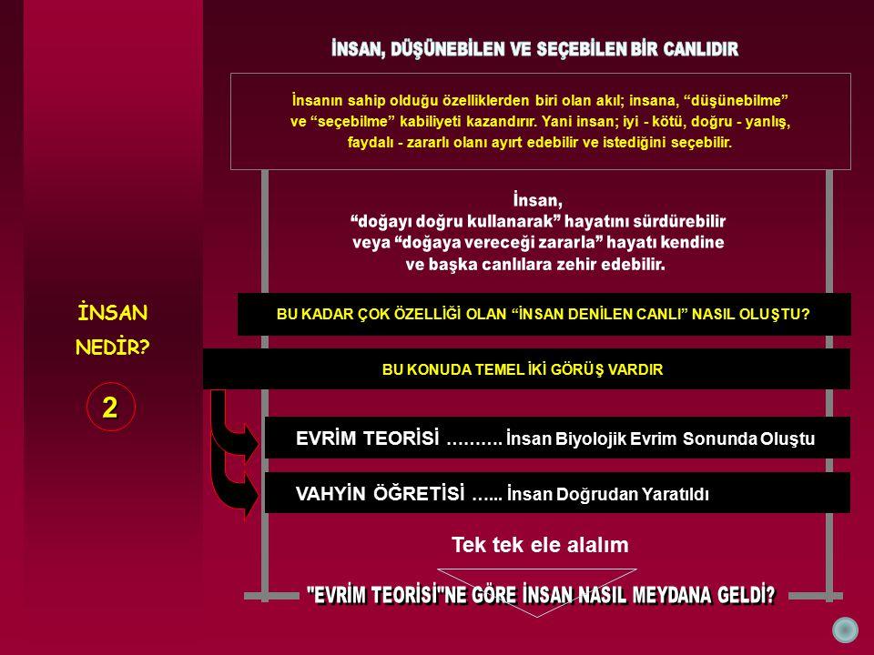 KÜRT - TÜRK ● ● Batılı devletlerin bu bölgedeki sömürgeci saldırıları Osmanlı Devleti'nin çöküşü ile birlikte yeniden hızlandı.