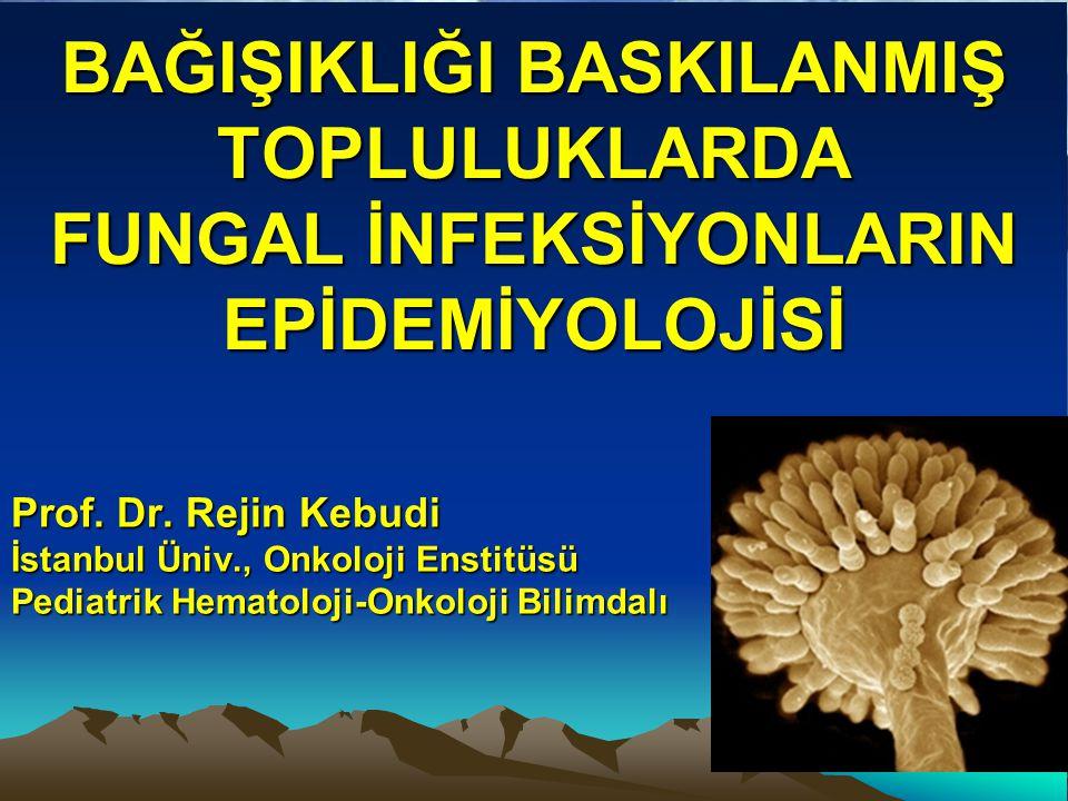 BAĞIŞIKLIĞI BASKILANMIŞ TOPLULUKLARDA FUNGAL İNFEKSİYONLARIN EPİDEMİYOLOJİSİ Prof.