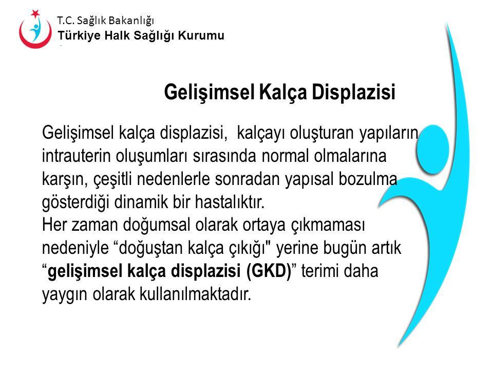 T.C. Sağlık Bakanlığı Türkiye Halk Sağlığı Kurumu T.C. Sağlık Bakanlığı Türkiye Halk Sağlığı Kurumu T.C. ADANA VALİLİĞİ HALK SAĞLIĞI MÜDÜRLÜĞÜ ÇOCUK,