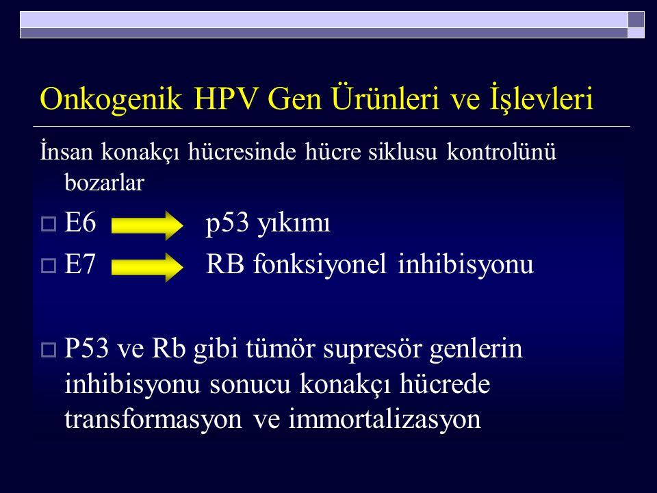 HPV  CIN 2-3 olgularının >% 90 ında onkojenik HPV tipleri ile 16, 18, 31, 33, 35, 39, 45, 51, 52, 56, 58, 59, 66, 68, 73 persiste infeksiyon sözkonus
