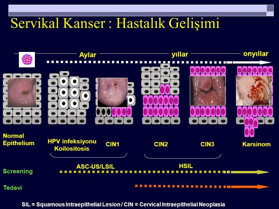 HSIL CIN2-3…servikal kanser LSIL HPV infeksiyonu,CIN1