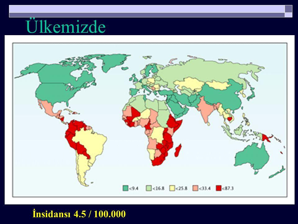  Her yıl dünyada  493.000 yeni vaka oluşmakta  274.000 kadın ölmektedir (Her iki dakikada bir kadın )  % 80'i orta ve düşük sosyoekonomik yapıdaki