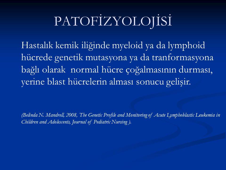 PATOFİZYOLOJİSİ Hastalık kemik iliğinde myeloid ya da lymphoid hücrede genetik mutasyona ya da tranformasyona bağlı olarak normal hücre çoğalmasının d