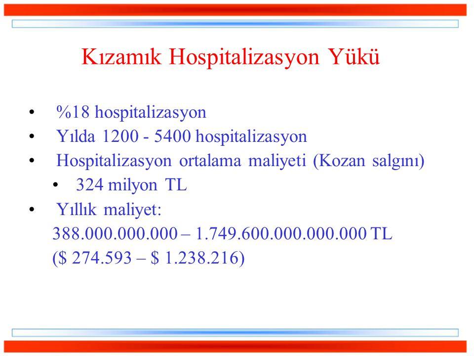 Kızamık Hospitalizasyon Yükü %18 hospitalizasyon Yılda 1200 - 5400 hospitalizasyon Hospitalizasyon ortalama maliyeti (Kozan salgını) 324 milyon TL Yıllık maliyet: 388.000.000.000 – 1.749.600.000.000.000 TL ($ 274.593 – $ 1.238.216)