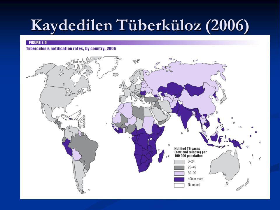 Kaydedilen Tüberküloz (2006) 
