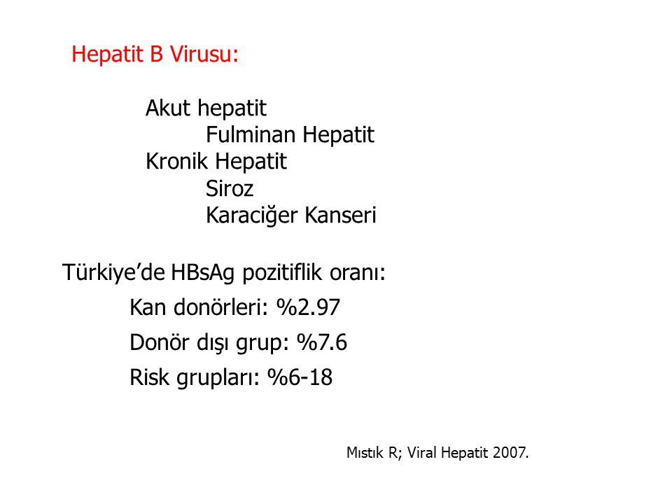 Hepatit B Virusu: Akut hepatit Fulminan Hepatit Kronik Hepatit Siroz Karaciğer Kanseri Türkiye'de HBsAg pozitiflik oranı: Kan donörleri: %2.97 Donör dışı grup: %7.6 Risk grupları: %6-18 Mıstık R; Viral Hepatit 2007.