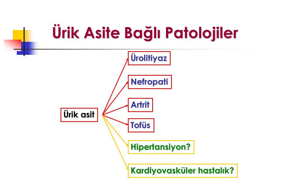 Ürik Asite Bağlı Patolojiler Ürik asit Artrit Hipertansiyon? Tofüs Nefropati Ürolitiyaz Kardiyovasküler hastalık?