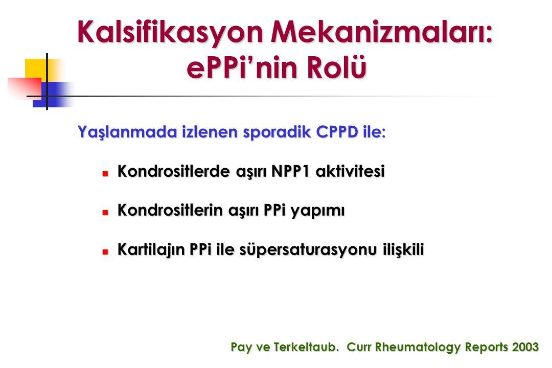 Kalsifikasyon Mekanizmaları: ePPi'nin Rolü Kalsifikasyon Mekanizmaları: ePPi'nin Rolü Yaşlanmada izlenen sporadik CPPD ile: Kondrositlerde aşırı NPP1 aktivitesi Kondrositlerde aşırı NPP1 aktivitesi Kondrositlerin aşırı PPi yapımı Kondrositlerin aşırı PPi yapımı Kartilajın PPi ile süpersaturasyonu ilişkili Kartilajın PPi ile süpersaturasyonu ilişkili Pay ve Terkeltaub.
