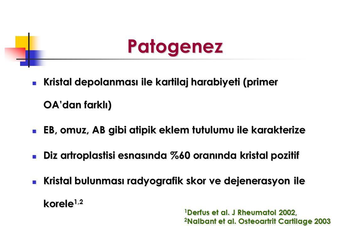 Patogenez Patogenez Kristal depolanması ile kartilaj harabiyeti (primer OA'dan farklı) Kristal depolanması ile kartilaj harabiyeti (primer OA'dan farklı) EB, omuz, AB gibi atipik eklem tutulumu ile karakterize EB, omuz, AB gibi atipik eklem tutulumu ile karakterize Diz artroplastisi esnasında %60 oranında kristal pozitif Diz artroplastisi esnasında %60 oranında kristal pozitif Kristal bulunması radyografik skor ve dejenerasyon ile korele 1,2 Kristal bulunması radyografik skor ve dejenerasyon ile korele 1,2 1 Derfus et al.