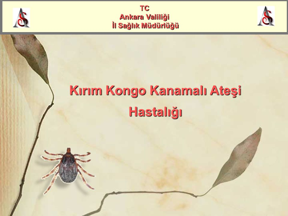Kırım Kongo Kanamalı Ateşi Hastalığı TC Ankara Valiliği İl Sağlık Müdürlüğü