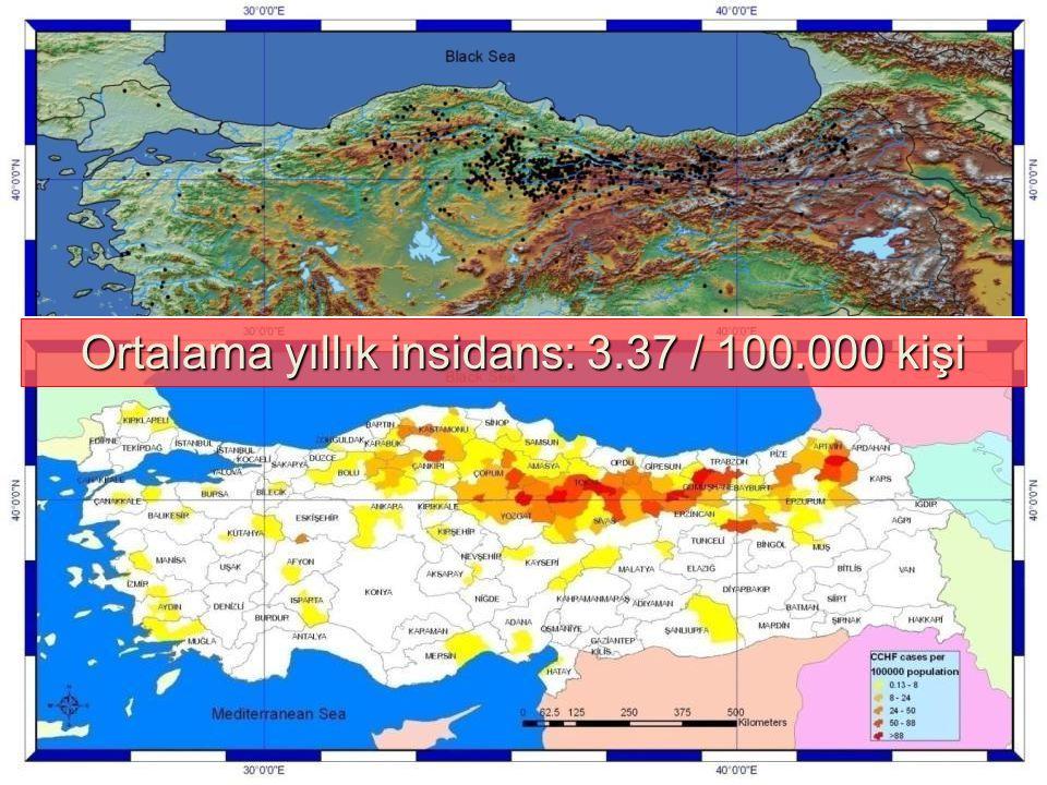 Ortalama yıllık insidans: 3.37 / 100.000 kişi