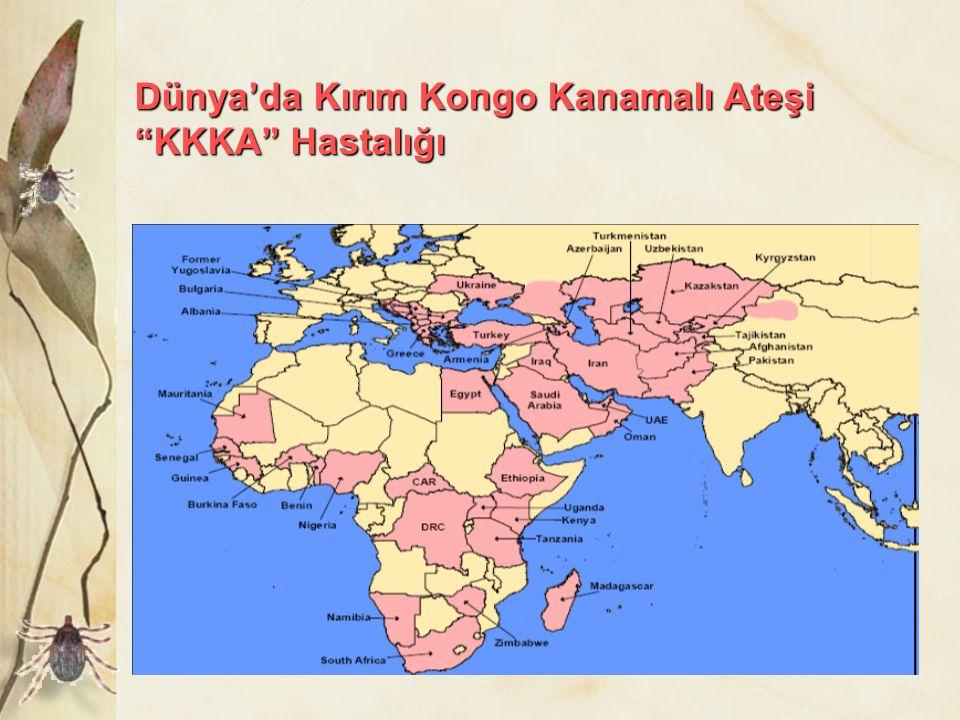 """Dünya'da Kırım Kongo Kanamalı Ateşi """"KKKA"""" Hastalığı"""