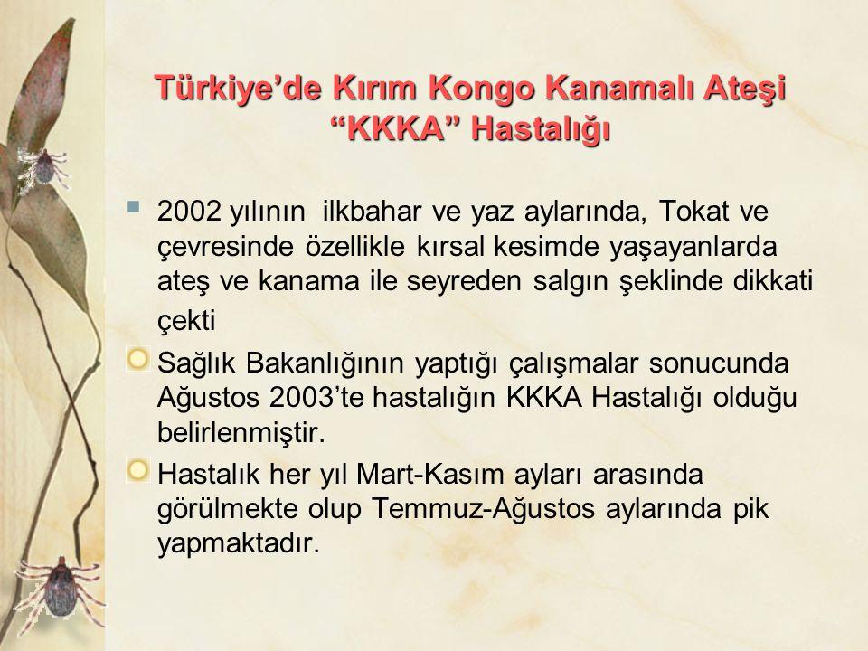 """Türkiye'de Kırım Kongo Kanamalı Ateşi """"KKKA"""" Hastalığı  2002 yılının ilkbahar ve yaz aylarında, Tokat ve çevresinde özellikle kırsal kesimde yaşayanl"""