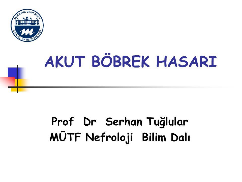 AKUT BÖBREK HASARI Prof Dr Serhan Tuğlular MÜTF Nefroloji Bilim Dalı
