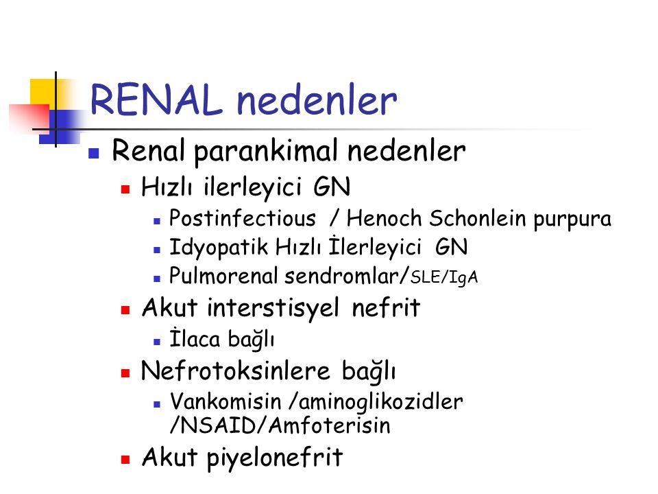 RENAL nedenler Renal parankimal nedenler Hızlı ilerleyici GN Postinfectious / Henoch Schonlein purpura Idyopatik Hızlı İlerleyici GN Pulmorenal sendro