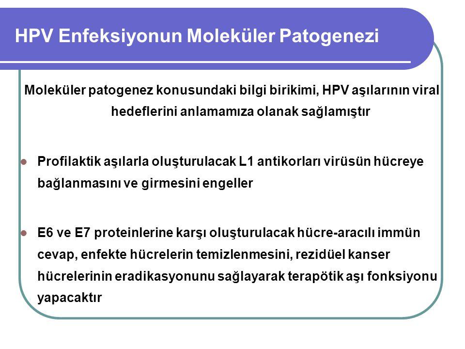 HPV Enfeksiyonun Moleküler Patogenezi Moleküler patogenez konusundaki bilgi birikimi, HPV aşılarının viral hedeflerini anlamamıza olanak sağlamıştır P