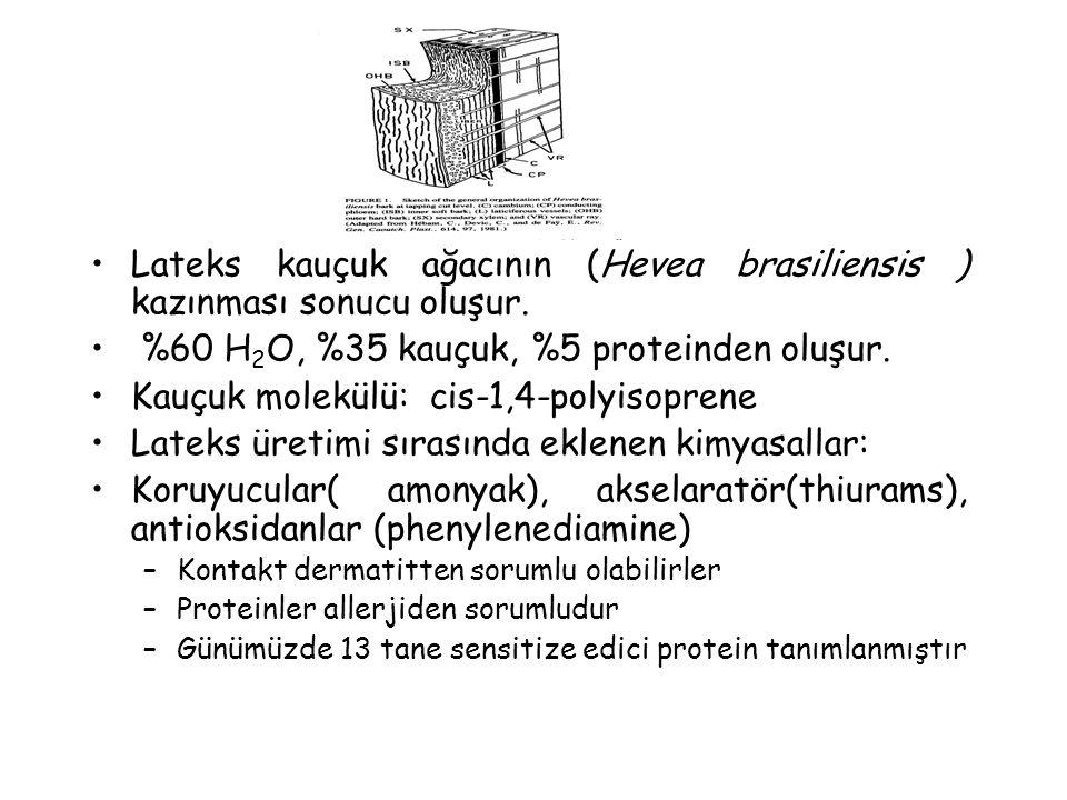 Lateks kauçuk ağacının (Hevea brasiliensis ) kazınması sonucu oluşur. %60 H 2 O, %35 kauçuk, %5 proteinden oluşur. Kauçuk molekülü: cis-1,4-polyisopre