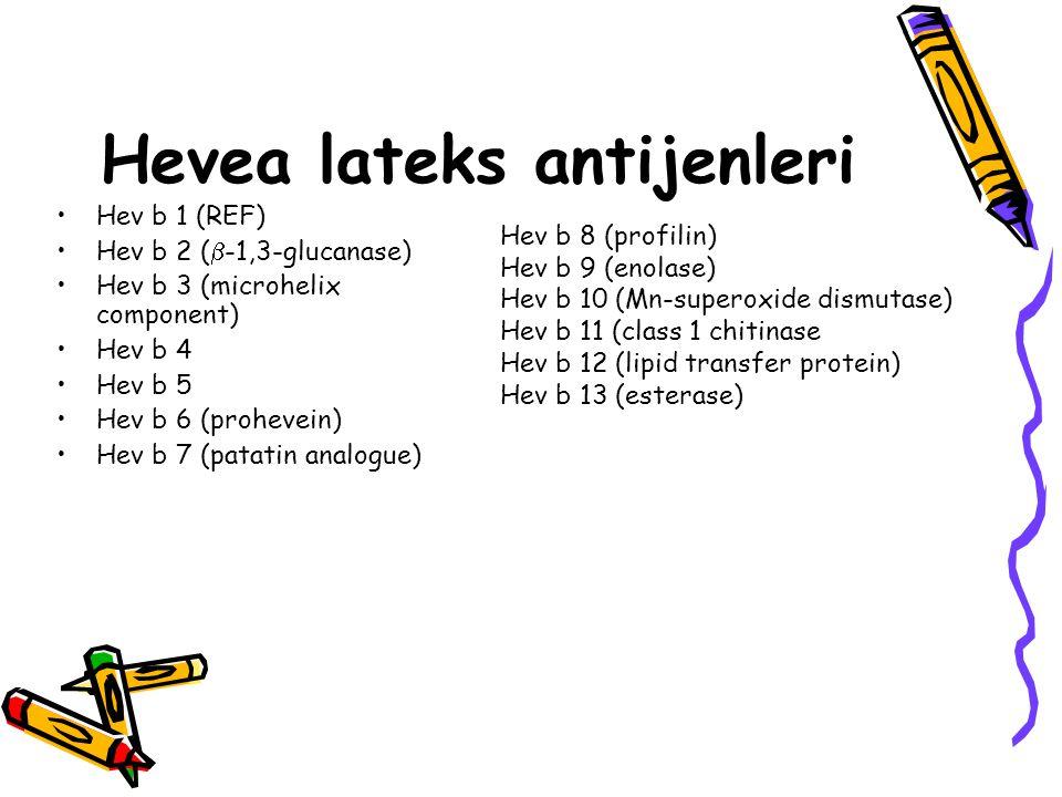 Hevea lateks antijenleri Hev b 1 (REF) Hev b 2 (  -1,3-glucanase) Hev b 3 (microhelix component) Hev b 4 Hev b 5 Hev b 6 (prohevein) Hev b 7 (patatin