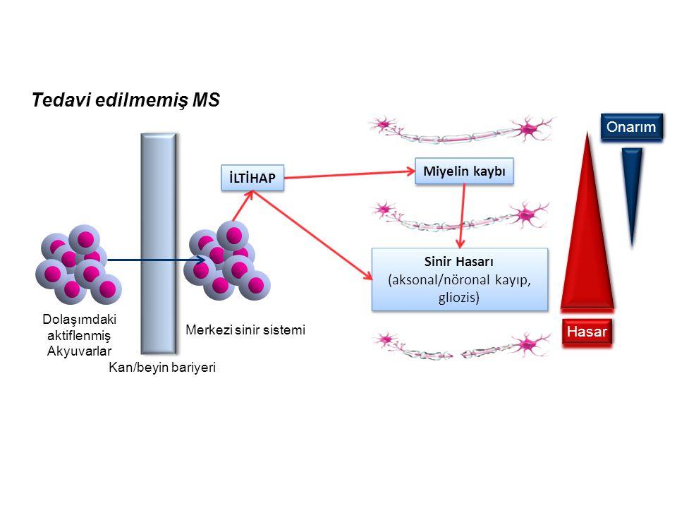 Sigara MS riskini artırır ( metaanaliz) Sigara - MS ilişkisi enlem ve soydan bağımsız Doz bağımlı Enfiye - MS ilişkisi yok Sigaranın etkisi nikotin il