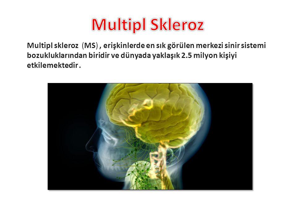 Multipl skleroz (MS), erişkinlerde en sık görülen merkezi sinir sistemi bozukluklarından biridir ve dünyada yaklaşık 2.5 milyon kişiyi etkilemektedir.