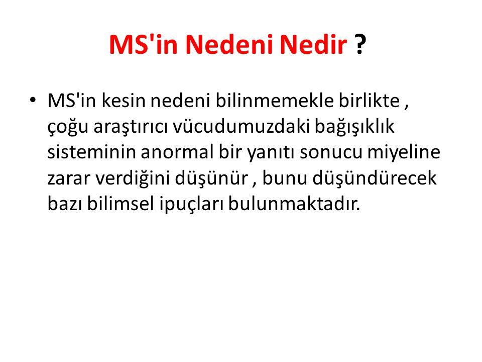 MS in Nedeni Nedir .