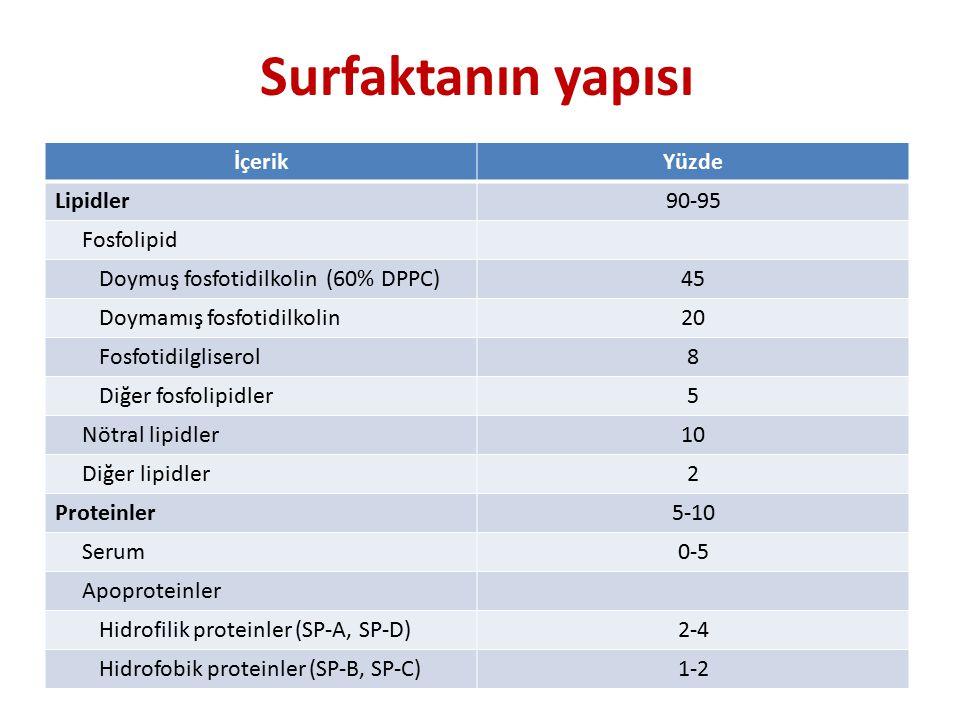 Surfaktanın yapısı İçerikYüzde Lipidler90-95 Fosfolipid Doymuş fosfotidilkolin (60% DPPC)45 Doymamış fosfotidilkolin20 Fosfotidilgliserol8 Diğer fosfolipidler5 Nötral lipidler10 Diğer lipidler2 Proteinler5-10 Serum0-5 Apoproteinler Hidrofilik proteinler (SP-A, SP-D)2-4 Hidrofobik proteinler (SP-B, SP-C)1-2