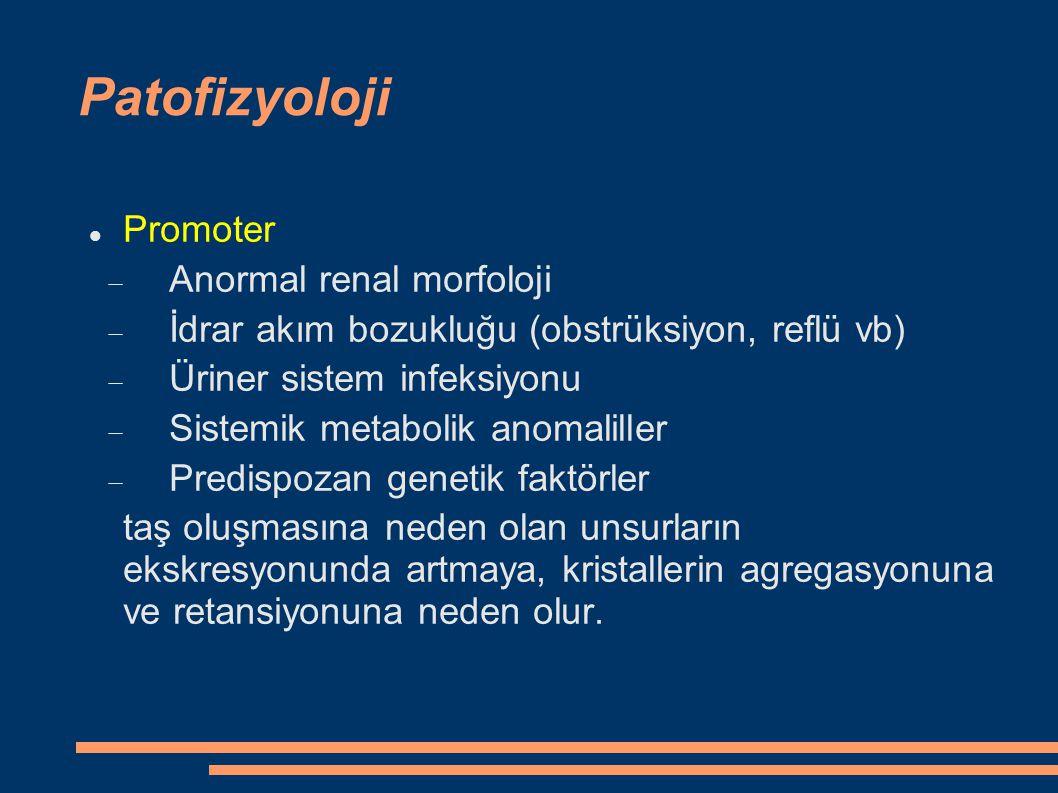 Patofizyoloji Kristalizasyon inhibitörleri:  İyonlar: sitrat, magnezyum, pirofosfat, sülfat, florid  Eser elementler: çinko, kalay  Glikozaminoglikanlar  Glikoproteinler: nefrokalsin, Tamm-Horsfall proteini, üropontin, β 2 -mikroglobulin, Magnezyum, sitrat, pirofosfat, nefrokalsin ; Kalsiyum fosfat kristallerinin oluşumunu inhibe ederler Nefrokalsin, glikozaminoglikanlar, RNA fragmanları, sitrat ve pirofosfat ; Kalsiyum oksalat kristallerinin oluşmasına engel olurlar