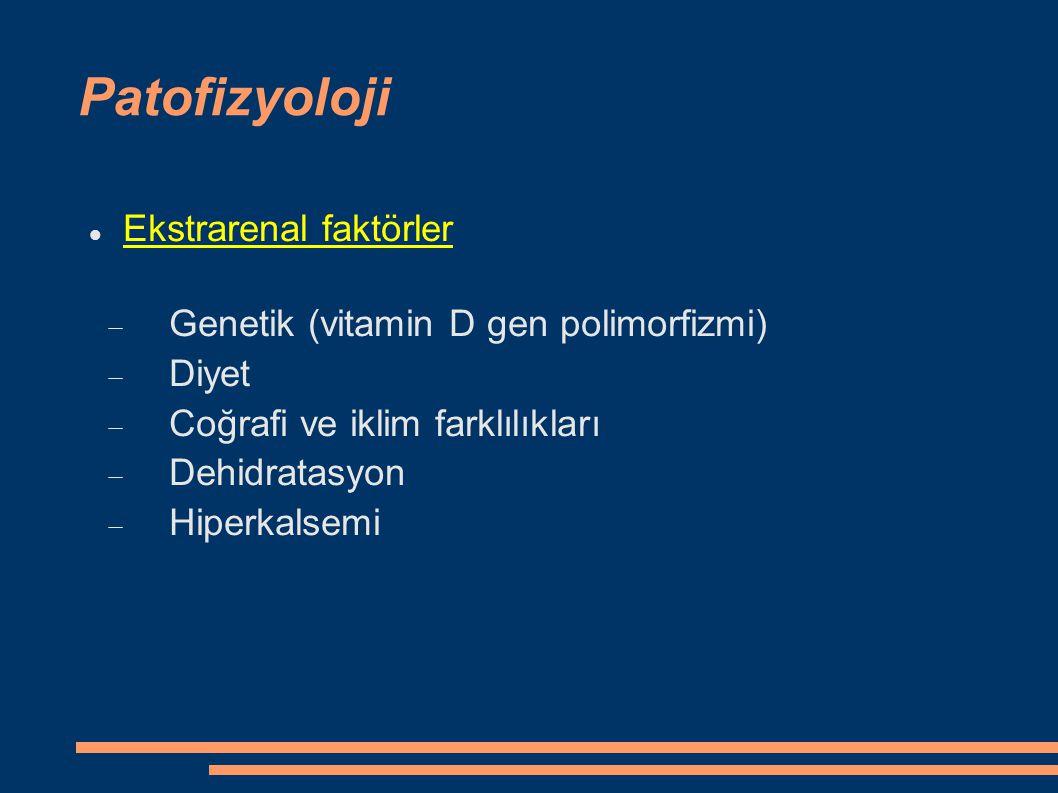 Patofizyoloji Ekstrarenal faktörler  Genetik (vitamin D gen polimorfizmi)  Diyet  Coğrafi ve iklim farklılıkları  Dehidratasyon  Hiperkalsemi