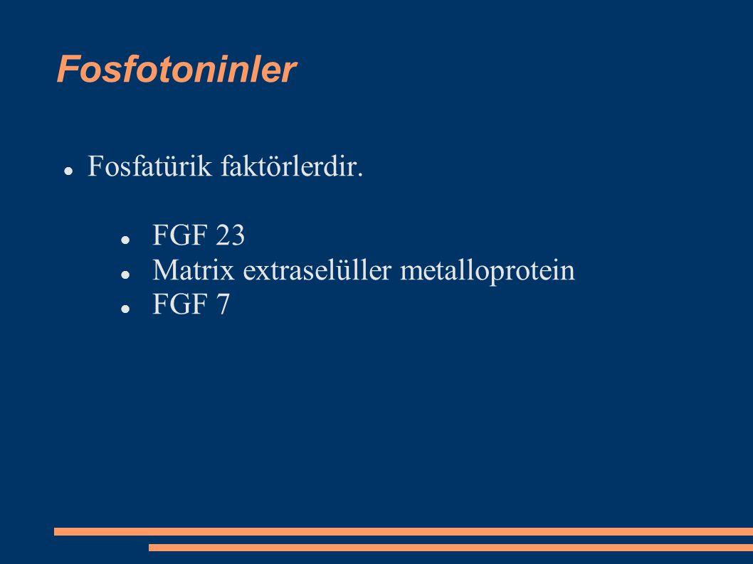 Diğer faktörler GH, IGF 1, insülin, epidermal growth faktör, tiroid hormonu, kalsitriol fosfor emilimi arttırır.
