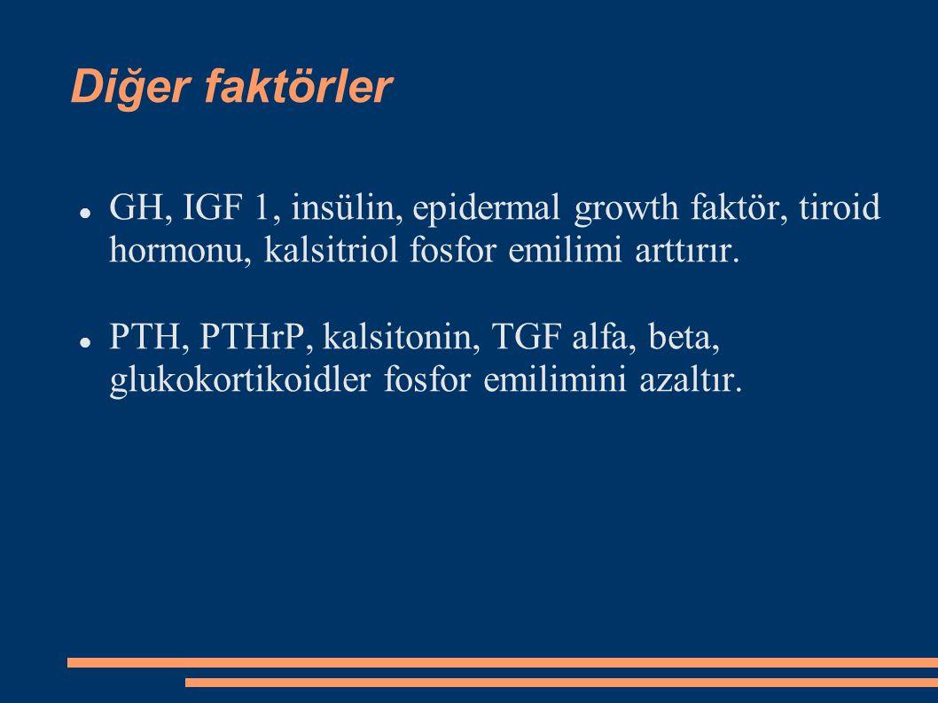 Diğer faktörler GH, IGF 1, insülin, epidermal growth faktör, tiroid hormonu, kalsitriol fosfor emilimi arttırır. PTH, PTHrP, kalsitonin, TGF alfa, bet