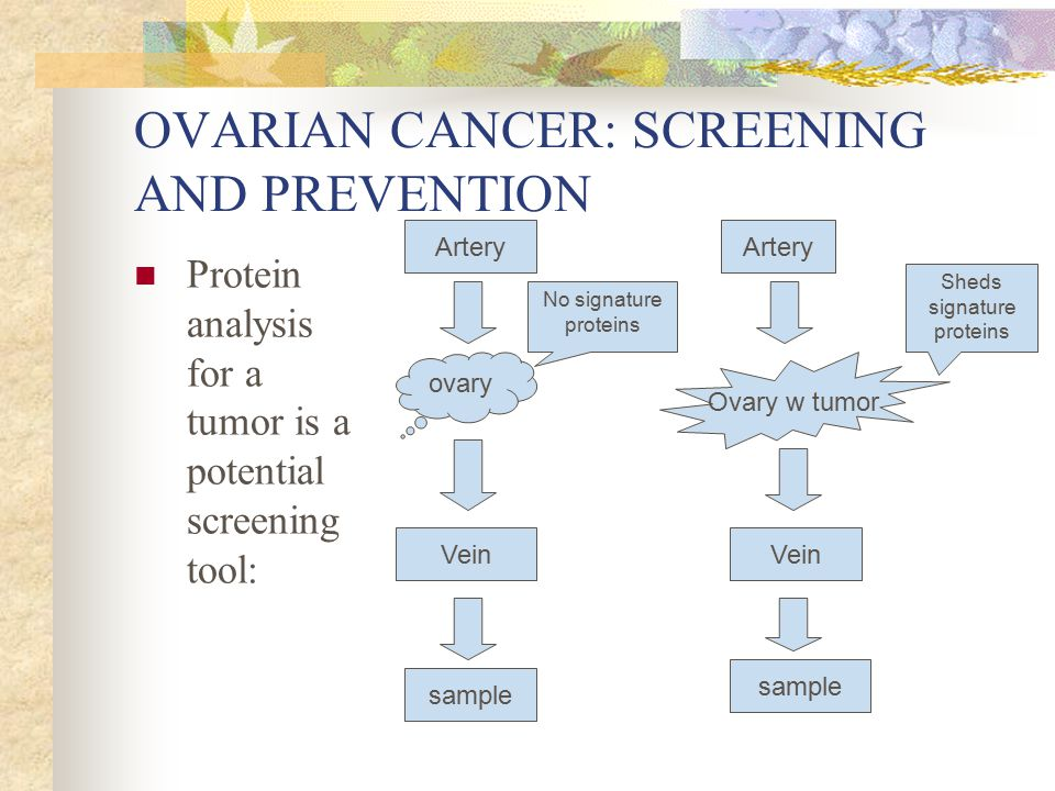 OVARIAN CANCER: SCREENING AND PREVENTION Protein analysis for a tumor is a potential screening tool: ovary Artery Vein sample Artery Ovary w tumor Vei