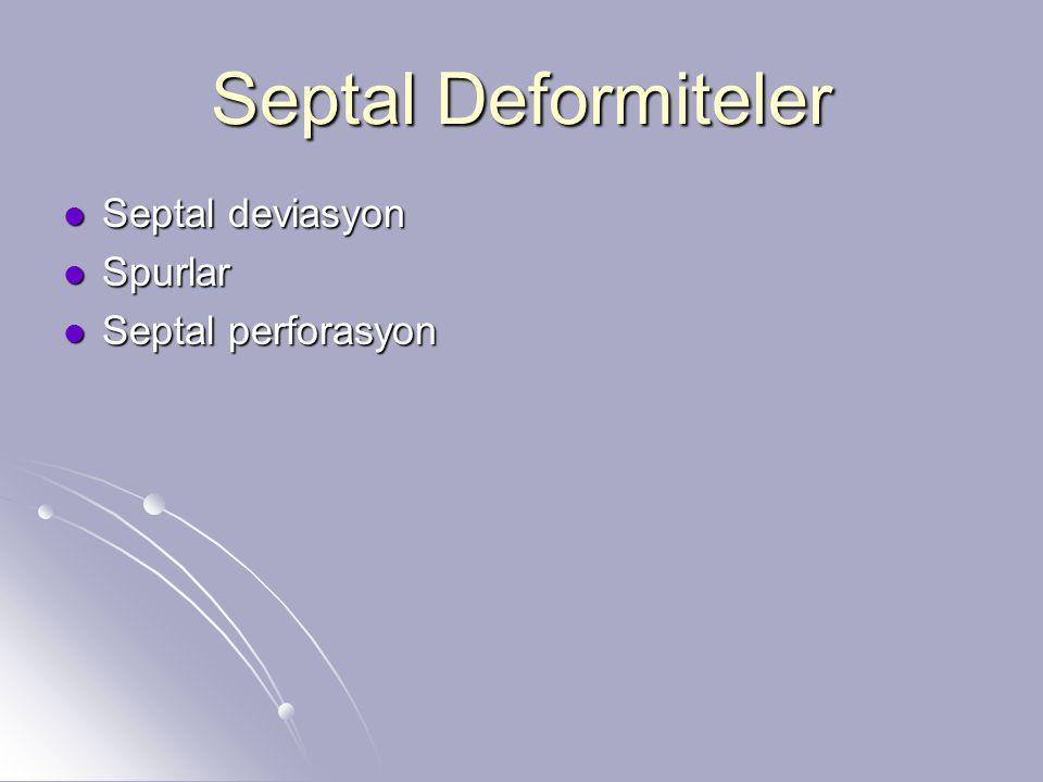 Septal Deformiteler Septal deviasyon Septal deviasyon Spurlar Spurlar Septal perforasyon Septal perforasyon