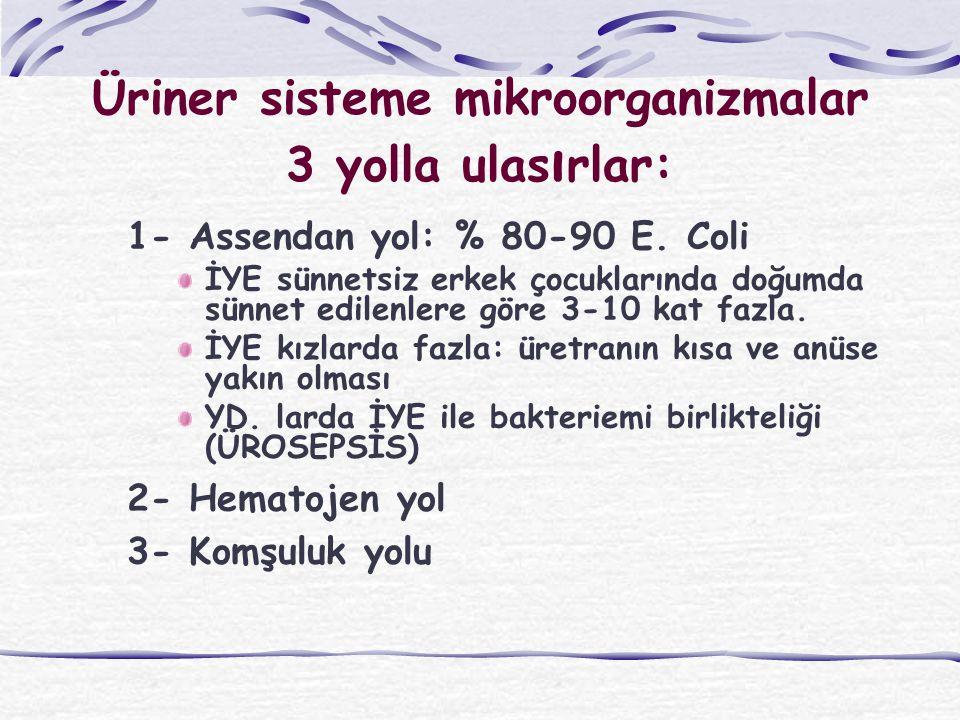 Üriner sisteme mikroorganizmalar 3 yolla ulas ı rlar: 1- Assendan yol: % 80-90 E. Coli İYE sünnetsiz erkek çocuklarında doğumda sünnet edilenlere göre
