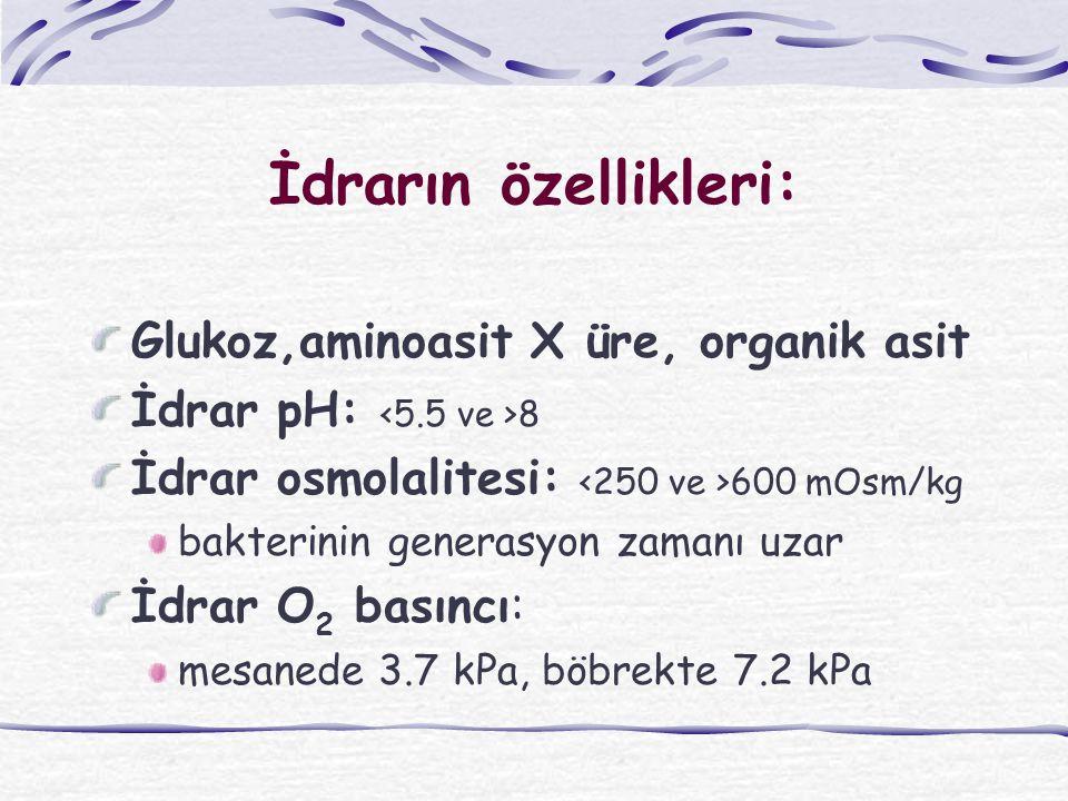 İdrarın özellikleri: Glukoz,aminoasit X üre, organik asit İdrar pH: 8 İdrar osmolalitesi: 600 mOsm/kg bakterinin generasyon zamanı uzar İdrar O 2 basıncı: mesanede 3.7 kPa, böbrekte 7.2 kPa