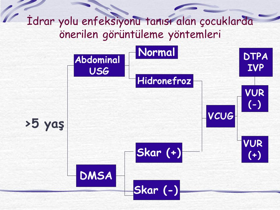 İdrar yolu enfeksiyonu tanısı alan çocuklarda önerilen görüntüleme yöntemleri >5 yaş Abdominal USG DMSA Skar (+) Skar (-) Normal Hidronefroz VCUG VUR (-) VUR (+) DTPA IVP