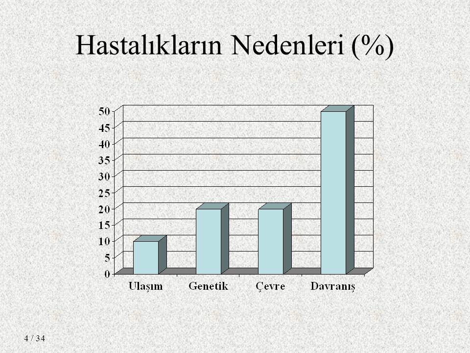 / 34 4 Hastalıkların Nedenleri (%)