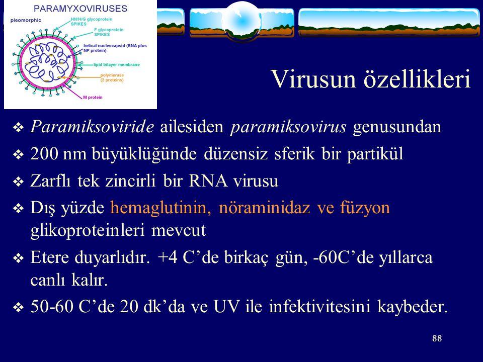 88 Virusun özellikleri  Paramiksoviride ailesiden paramiksovirus genusundan  200 nm büyüklüğünde düzensiz sferik bir partikül  Zarflı tek zincirli bir RNA virusu  Dış yüzde hemaglutinin, nöraminidaz ve füzyon glikoproteinleri mevcut  Etere duyarlıdır.