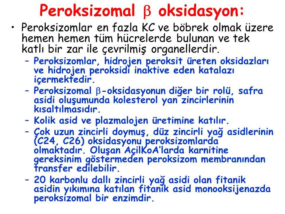 Peroksizomal  oksidasyon: Peroksizomlar en fazla KC ve böbrek olmak üzere hemen hemen tüm hücrelerde bulunan ve tek katlı bir zar ile çevrilmiş organ