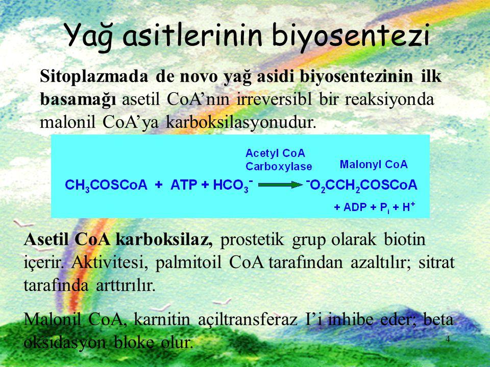 4 Yağ asitlerinin biyosentezi Sitoplazmada de novo yağ asidi biyosentezinin ilk basamağı asetil CoA'nın irreversibl bir reaksiyonda malonil CoA'ya karboksilasyonudur.