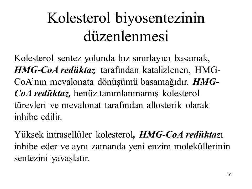 46 Kolesterol biyosentezinin düzenlenmesi Kolesterol sentez yolunda hız sınırlayıcı basamak, HMG-CoA redüktaz tarafından katalizlenen, HMG- CoA'nın me