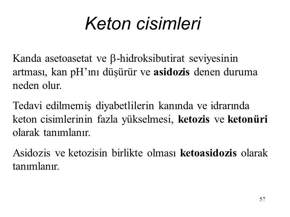57 Keton cisimleri Kanda asetoasetat ve  -hidroksibutirat seviyesinin artması, kan pH'ını düşürür ve asidozis denen duruma neden olur. Tedavi edilmem