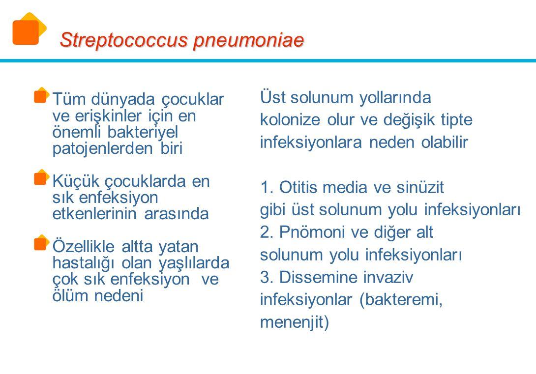 7.000.000 otitis media olgusu/yıl 500.000 pnömoni olgusu yıl 50.000 bakteremi olgusu/yıl 3.000 menenjit olgusu/yıl Streptococcus pneumoniae (ABD) MMWR 1997, vol 46, No:RR-8