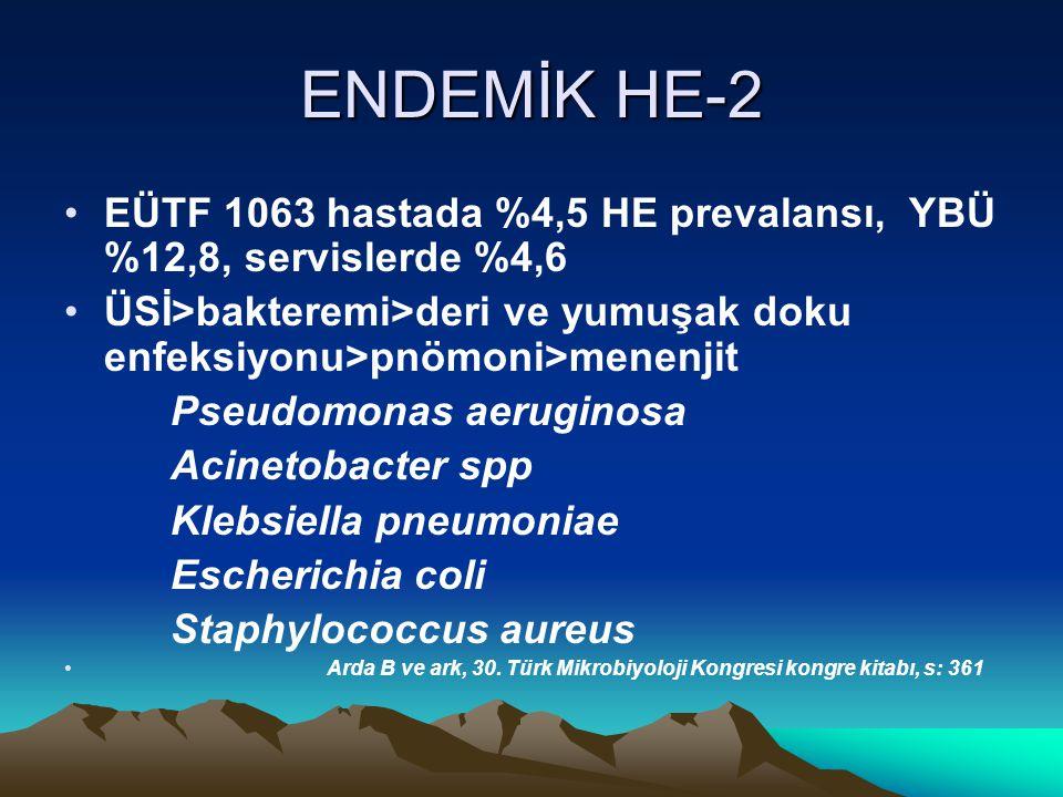 ENDEMİK HE-2 EÜTF 1063 hastada %4,5 HE prevalansı, YBÜ %12,8, servislerde %4,6 ÜSİ>bakteremi>deri ve yumuşak doku enfeksiyonu>pnömoni>menenjit Pseudomonas aeruginosa Acinetobacter spp Klebsiella pneumoniae Escherichia coli Staphylococcus aureus Arda B ve ark, 30.