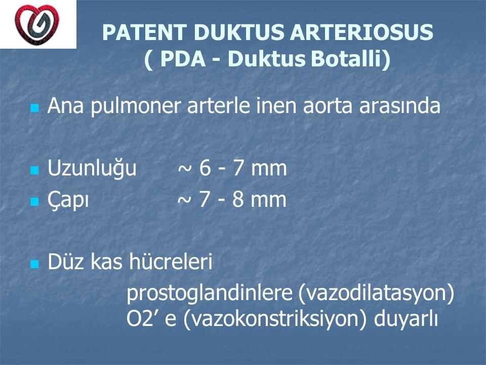 PATENT DUKTUS ARTERIOSUS ( PDA - Duktus Botalli) Ana pulmoner arterle inen aorta arasında Uzunluğu ~ 6 - 7 mm Çapı ~ 7 - 8 mm Düz kas hücreleri prosto