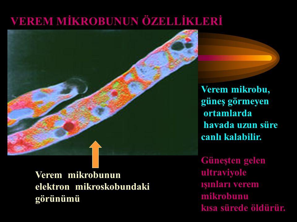 VEREM MİKROBUNUN ÖZELLİKLERİ Verem mikrobunun elektron mikroskobundaki görünümü Verem mikrobu, güneş görmeyen ortamlarda havada uzun süre canlı kalabi