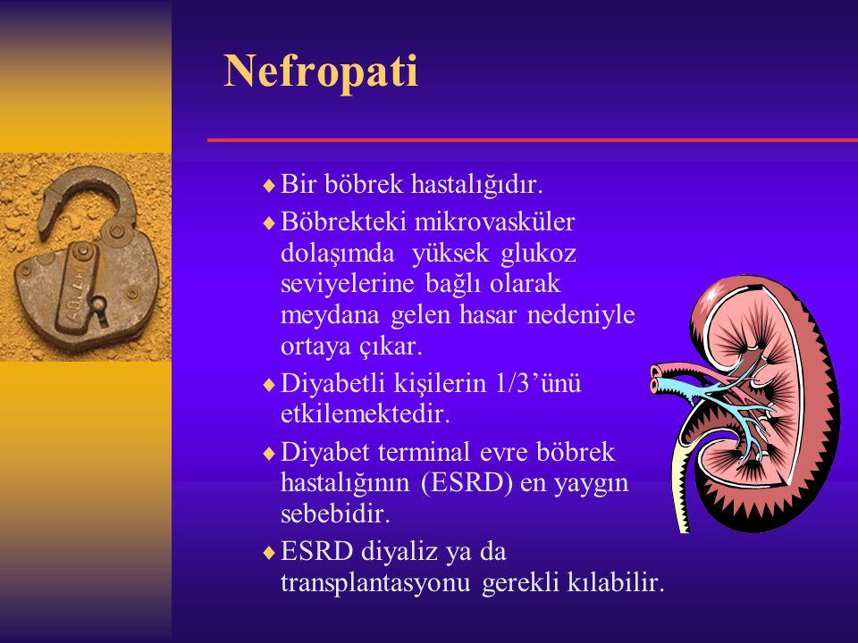 Nefropati  Bir böbrek hastalığıdır.