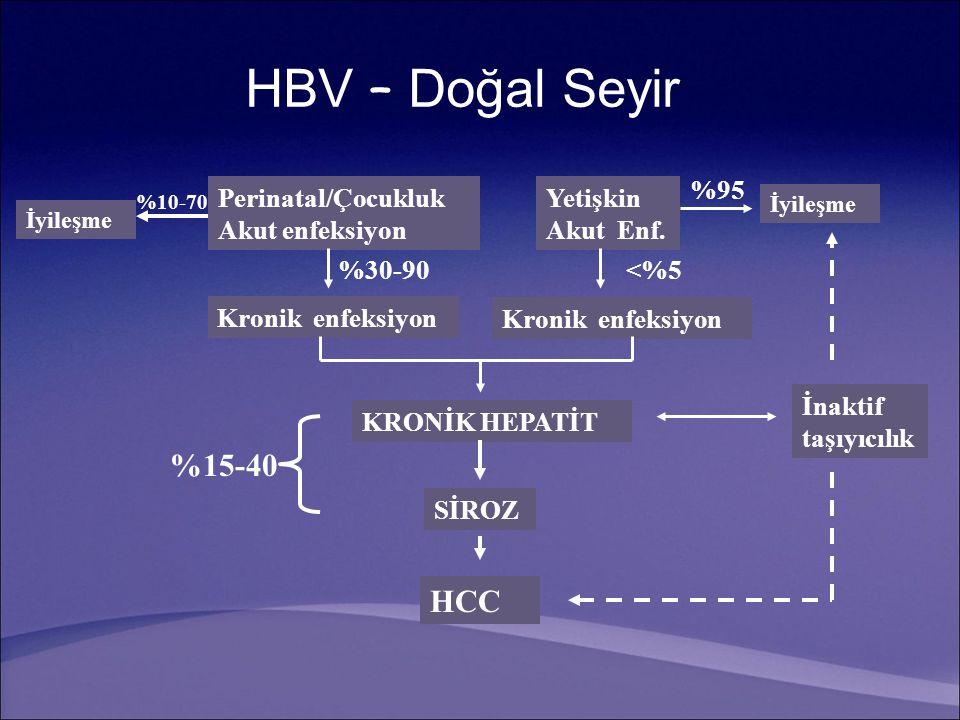 HBV – Doğal Seyir Perinatal/Çocukluk Akut enfeksiyon İyileşme Kronik enfeksiyon %30-90 %10-70 Yetişkin Akut Enf. İyileşme %95 <%5 Kronik enfeksiyon KR